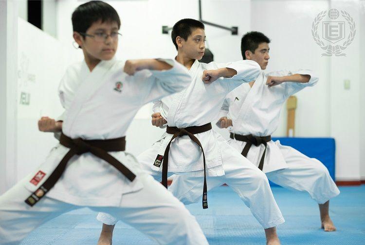 Karate AELU