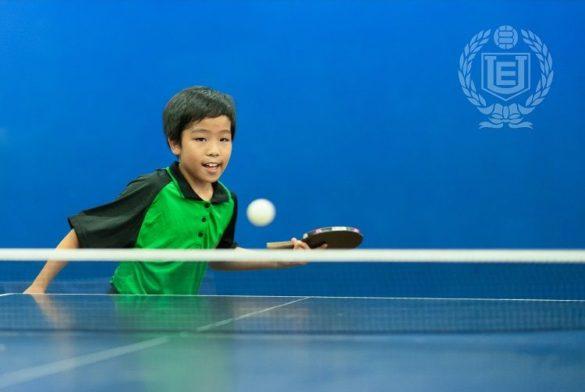 Tenis de mesa AELU