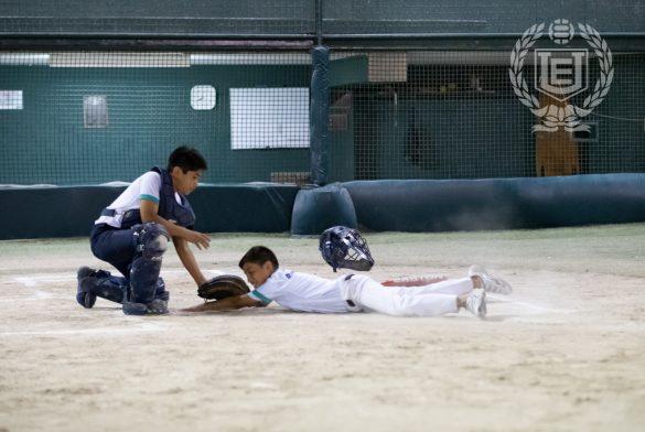Béisbol AELU